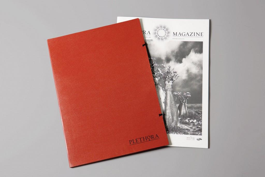 Plethora-Magazine.140893